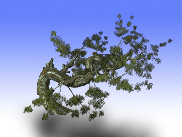 tree trunk 3d obj