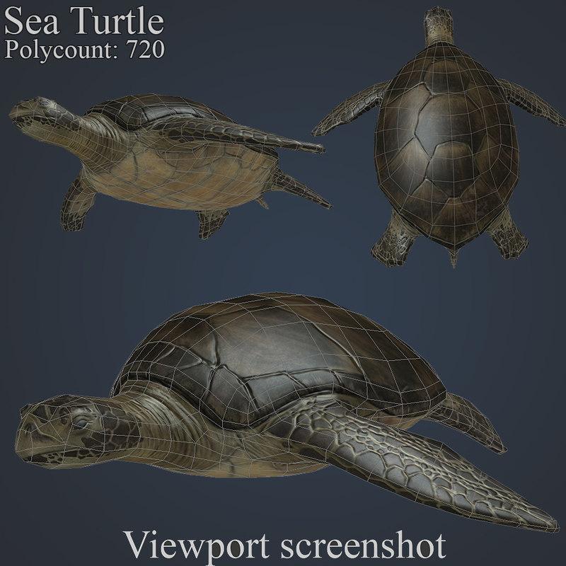 sea turtle 3d obj