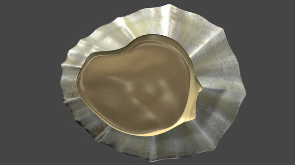 3d limpet common marine model