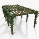 Wooden Pergola With Ivy Plant