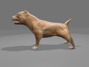 3d pit bull model