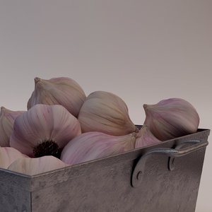 3ds max bowl garlic