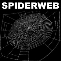 spiderweb web 3d max