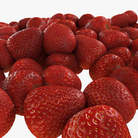 Strawberry Fruit Collection Set Berry Garden Red Juicy Succulent Pile