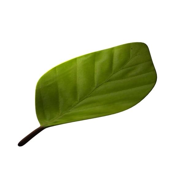 3d leaf 02