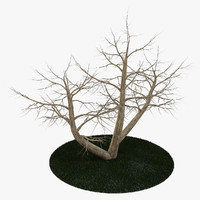 3d tree 4 branches model