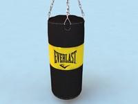 punch bag 3d model