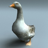goose 3d model