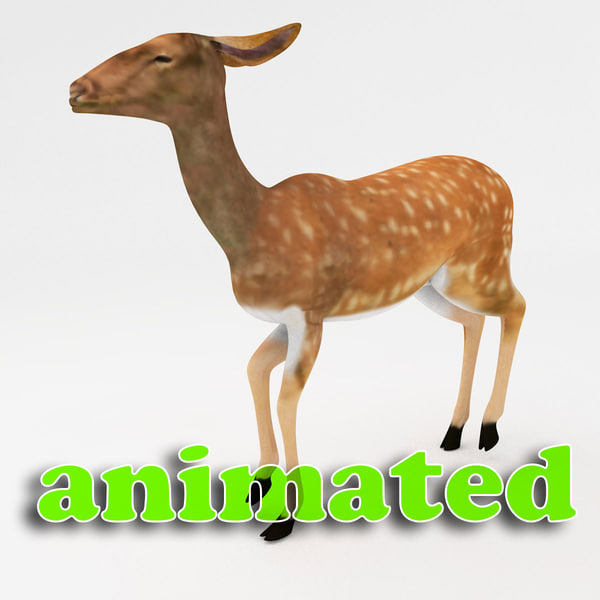 3d deer character dynamic model