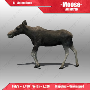 female moose animations 3d model