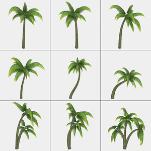 3d max palm mc-01