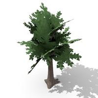 tree obj free