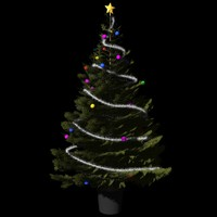 christmas tree m-01 3d model