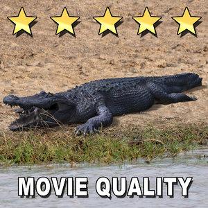 3d crocodile animate