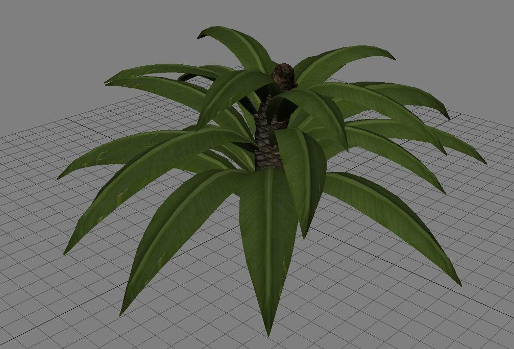 tropical plant x free