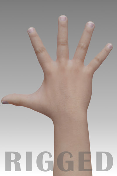 realistic hand 3d obj