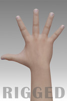 Realistic Hand