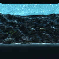 3d public aquarium fish
