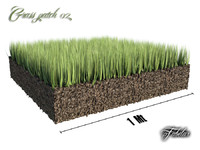 Grass patch 02