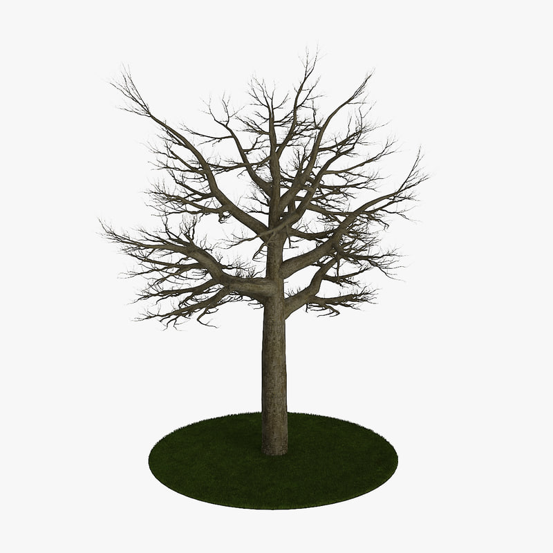 3d model tree 8 branches