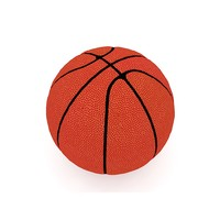basketball ball max