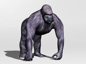 3d primate gorilla
