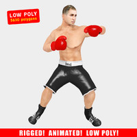 3d ged boxer