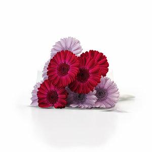 bouquet gerbera max