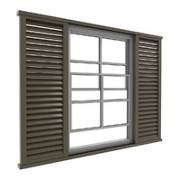 Window and Blinds