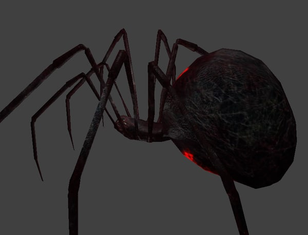widow spider 3d model