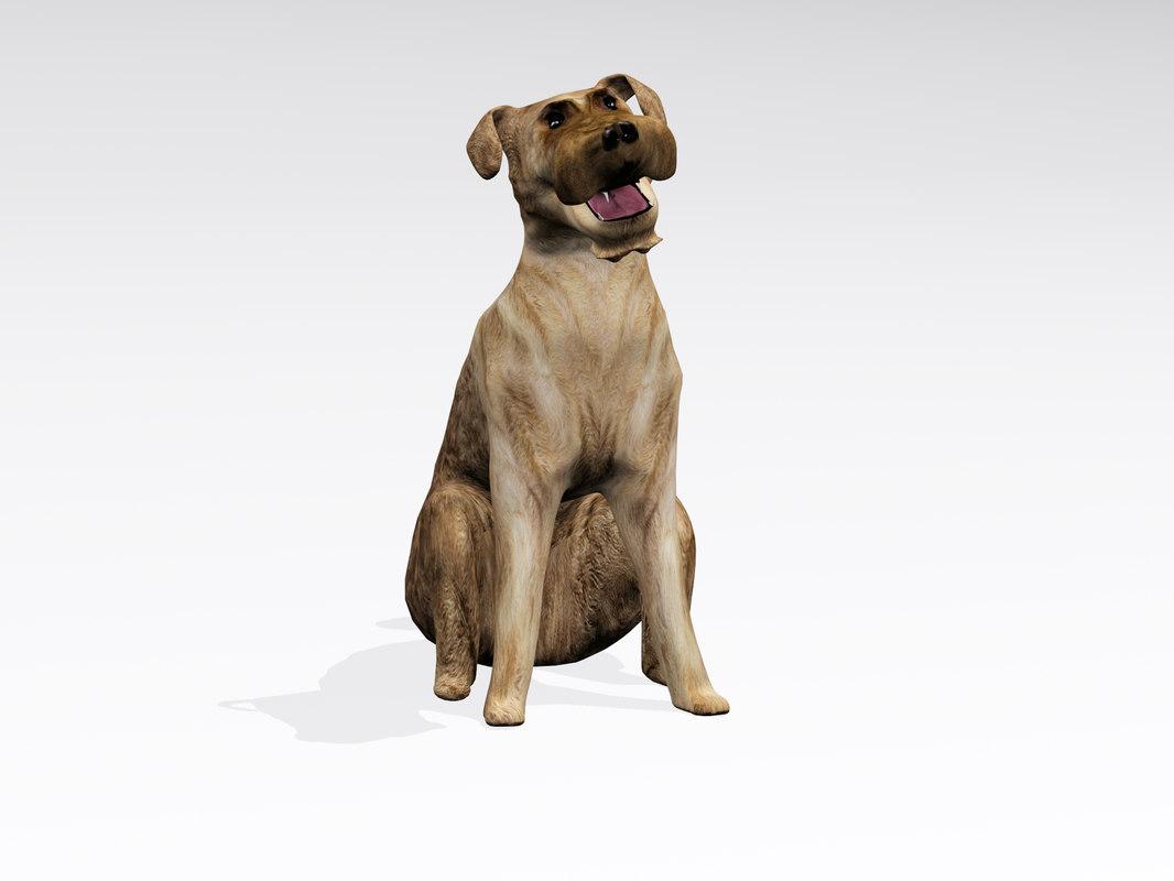 sitting dog 3d model