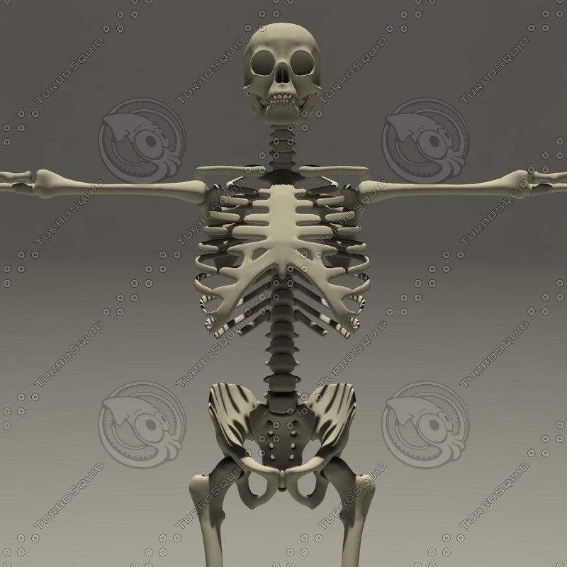 walking skeleton animations fbx