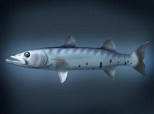 baracuda fish 3d model