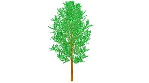 spring tree 3d obj