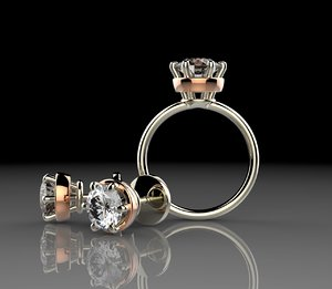 3d ring earrings model