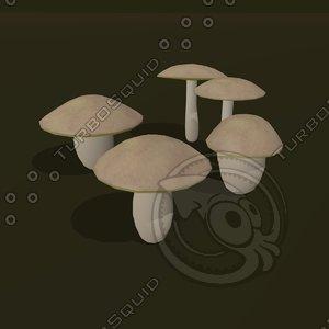 3d model of boletus cartoon
