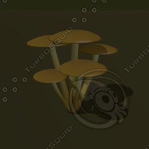 fungus cluster cartoon 3d model