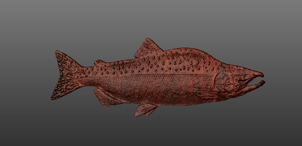 3d salmon model