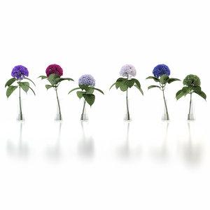 vases hydrangea 3d max