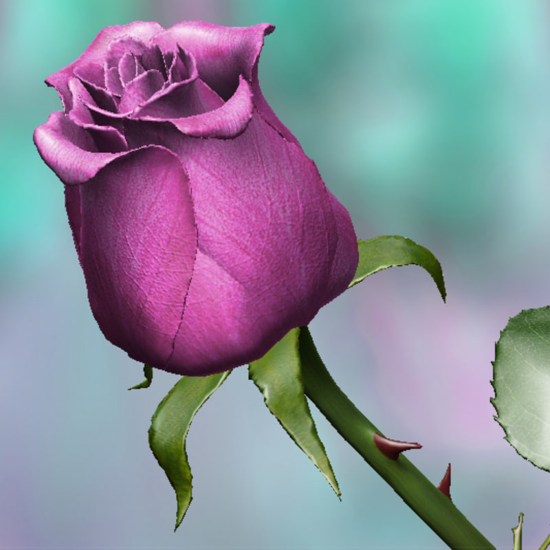 pink rose 3d model