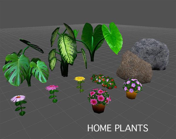 home plants flowers c4d