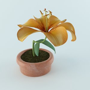 3d model of lilly flower
