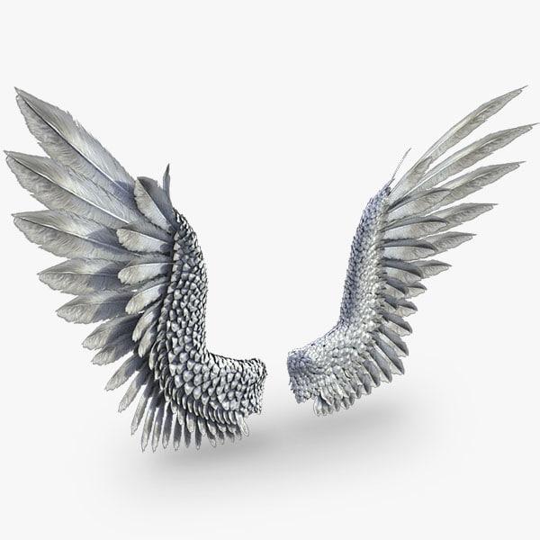 3d model bird angel wings