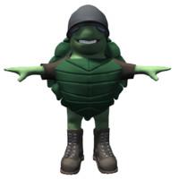 maya cartoon turtle character