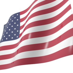 flags world 3d model
