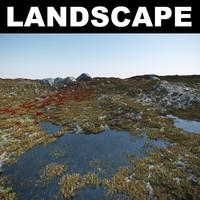 3d model tundra landscape