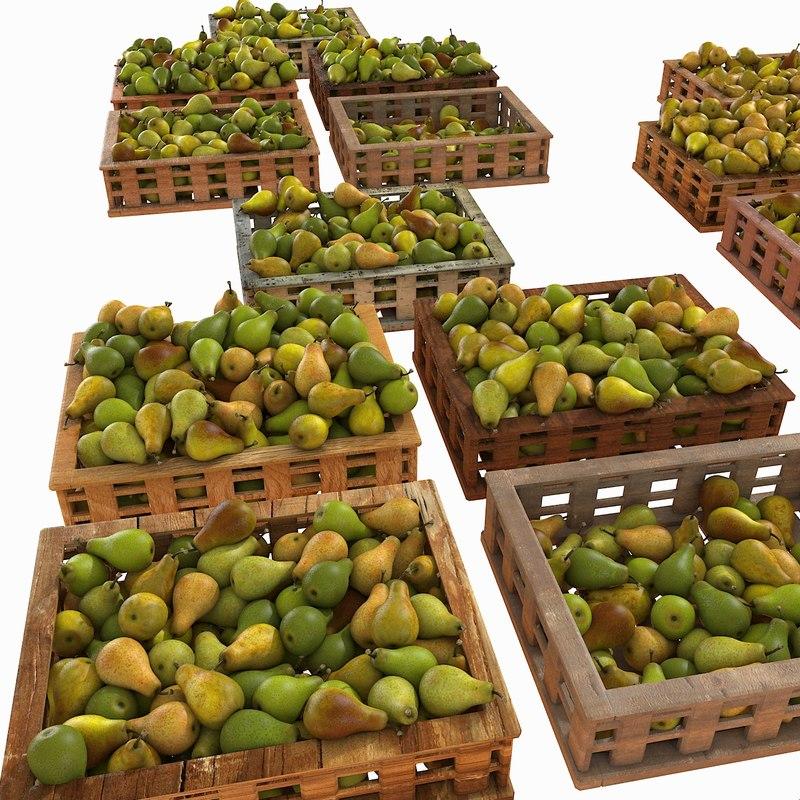 plant plantation market obj