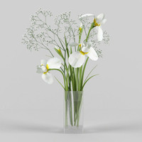 iris gipsofila vase 3d model