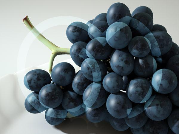 obj photorealistic black grape