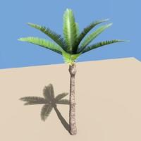 3d low-poly palm tree